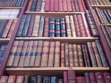 Librairie Antimoine