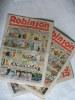 ROBINSON . Collectif/ROBINSON
