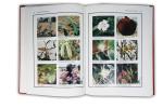 Encyclopédie médicale de l'Afrique. Ouvrage publié en coll. avec Enda Tiers-Monde. En 4 vols..