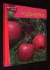 La Pomme. Barbé-Julien Colette