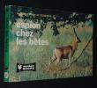 Espion chez les bêtes : la faune d'Europe au téléobjectif. Plécy Albert, Merlet François