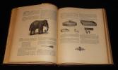 Bromatologie pittoresque illustrée. Dictionnaire de la table : Encyclopédie alimentaire, hygiénique et médicale. Brémond Félix