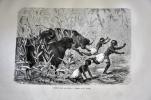 Exploration du Zambèse et de ses affluents et découverte des lacs Chiroua et Nyassa (1858-1864) .  David et Charles Livingstone