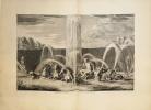 [CABINET DU ROI] Description de la grotte de Versailles. Le Labyrinthe de Versailles. Fontaines et bassin de Versailles..