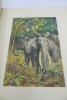 Les Grandes Chasses en Indochine - Souvenirs d'un forestier. BORDENEUVE - JOYEUX (André) [Illustrateur]