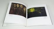 FLAURE, peintures 1959 - 1990 - Exposition du 6 au 26 août 1991. FLAURE - RESTELLINI Marc - FAVIER Jean