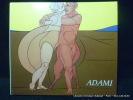Adami. Peintures et dessins. Cat. expo Cloître Saint-Louis. Juillet-Août 1984. Adami, Valério. Texte de Marc le Bot.