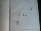 Une journée d'enfant. Compositions inédites par Adrien Marie . Avec vingt planches en héliogravure de Dujardin. Un des 200 ex. du tirage de luxe sur ...