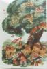 Der letzte Baum. Baumann  Zavrel (illustration)