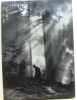 Images de la forêt noire. Schneiders  Feger  Liehl  Hell