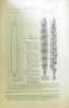 Les blés cultivés 1° la stachymétrie 2° étude mrophologique de l'épi. Denaiffe Sirodot