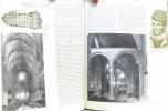 Dictionnaire des églises de France II A Bourgogne Nivernais Lyonnais. Collectif