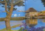 L'île de Bréhat - tout savoir sur l'île aux fleurs (avec 2 cartes postales à découper). Collectif