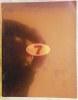 An exhibition by 7 artists.. [Catalogue d'exposition de la Galerie Sidney Janis de New York] - 7 artists.