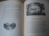 Notre Pays de France. FLEUR DES ALPES.. LABESSE Ed.-D. et PIERRET H.