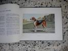 Les chiens de chasse . R. de Kermadec - Docteur Herout - Henri Teissonniere - Francois Castellan