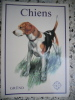 Chiens - Illustrations de Zdenek Berger. Ludek J. Dubroruka / Zdenek Berger