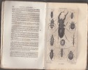 Nouveaux Éléments d' Histoire Naturelle, Contenant La Zoologie, La Botanique, La Minéralogie et La Géologie. Avec 48 Planches Gravées Sur Acier, et ...
