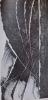 Adam. Oeuvre gravé  1939 - 1957.. [ADAM] - GHEERBRANT (Bernard)