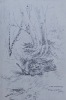 La Bécasse à Grande Quête.. LA FUYE (Maurice de) - Vicomte d'APPLAINCOURT - KERMADEC (Ronan de) - BROISSIA (Comte Pierre de)