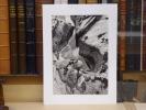 Mers, Plages, Sources et Torrents, Arbres.. CLERGUE Lucien
