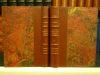 Fin de l'indépendance Bohême. Tome 1: Georges de Podiébrad. Les Jagellons. - Tome 2: Les premiers Habsbourgs. La défenestration de Prague.. DENIS ...
