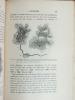 Etude Monographique sur les Acinétiens (2 Tomes - Complet) I : Recherches expérimentales sur l'étendue des variations et les facteurs tératogènes ; II ...