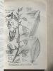 Flore Agronomique des Antilles Françaises. Vol. III : Flore des Légumineuses et anti-érosion. STEHLE, Henri et Madelein [ Stehlé, Henri (1909-1983) et ...