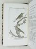 Histoire Naturelle des Oiseaux, par Leclerc de Buffon. Tome Treizième [ Tome 13 seul ] Rédigé par C.S. Sonnini. LECLERC DE BUFFON ; SONNINI, C. S.