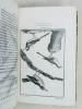 Histoire Naturelle des Oiseaux, par Leclerc de Buffon. Tome Quinzième [ Tome 15 seul ] Rédigé par C.S. Sonnini. LECLERC DE BUFFON ; SONNINI, C. S.