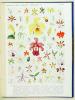 Atlas en couleurs des Orchidées cultivées. . COSTANTIN, Julien