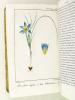 L'Ami des Champs. Journal d'Agriculture, de Botanique & Bulletin Littéraire du Département de la Gironde. 3me Année [ Année 1825 complète ]. Collectif ...