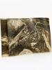 Lot de 2 photographies aériennes de Belluno, en Italie, prises le 11 mai 1918, à 9 h 00 :  [ Fotografia aerea in Italia, sul fronte a Belluno - ZN 28 ...