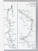 Schéma de protection contre les eaux de la Garonne (3 Tomes - Complet) 1 : Monographie des crues de la Garonne (du Pont du Roy au Bec d'Ambès) ; 2 : ...