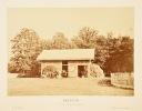 Le bois de Vincennes décrit et photographié.. La Bédolière (Emile de ; 1812-1883) et Rousset (Ildefonse ; 1817-1878) :