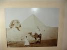 VOYAGE EN EGYPTE / PHOTOGRAPHIE XIXe 54cm X 43 cm. VOYAGE EN EGYPTE