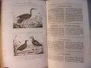Les Oiseaux 3 volumes. Buffon