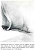 Que ma joie demeure. Texte revu par l'auteur, mis en pages et illustré de pointes-sèches (43) par Pierre Viénot.. GIONO Jean - ( VIENOT Pierre - ...