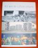 60 ans de culture urbaine (ile de la réunion).. COLLECTIF-Société du département de la réunion.