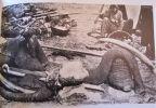 Les chasses coloniales par les cartes postales. (Chasse en Afrique).. RENAUD (Jean-Jacques)