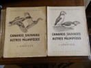 Canards Sauvages et Autres Palmipèdes.. Oberthur