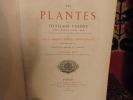 Les Plantes à Feuillage Coloré, histoire, description, culture, emploi, des espèces les plus remarquables pour la décorations des parcs, jardins, ...