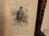 Traité de zootechnie spéciale. Les oiseaux de basse-cour, cygnes, oies, canards, paons, faisans, pintades, dindons, coqs, pigeons.. Cornevin, Ch.
