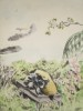 Poèmes des quatre saisons : le printemps (poèmes de Théophile Gautier, Charles d'Orléans, Vion Dalibray, Francis Jammes, Pierre de Rondard, Toulet, ...