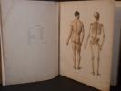 Anatomie des formes du corps humain à l'usage des peintres et des sculpteurs. Atlas et texte.. FAU (Dr J.).
