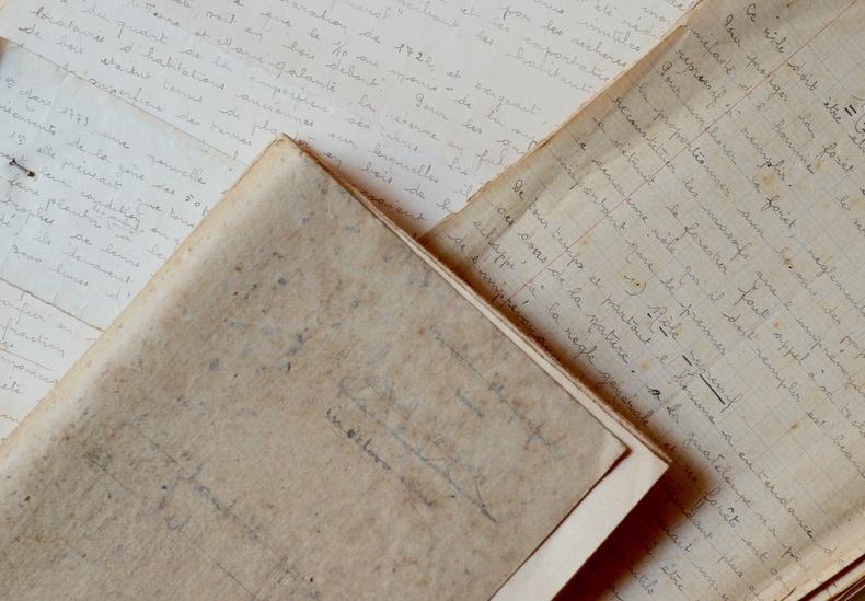 Manuscrit contenant la description des principales essences forestières de la Guadeloupe.