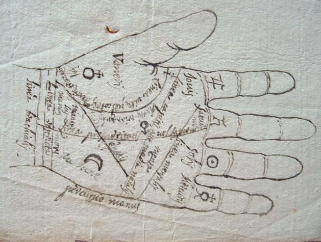 Ce que disent les lignes de la main..
