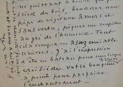 Roger Wild peintre hirsute parmi les pies et les libellules.. Roger Wild (1894-1987) Peintre, illustrateur, affichiste et décorateur, ami de ...