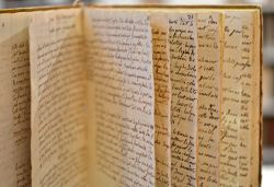 Manuscrit de classification botanique du tout début du XIXe..