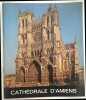Cathédrale d' Amiens. Brandicourt Desoby